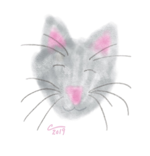 Sketch of a cats face