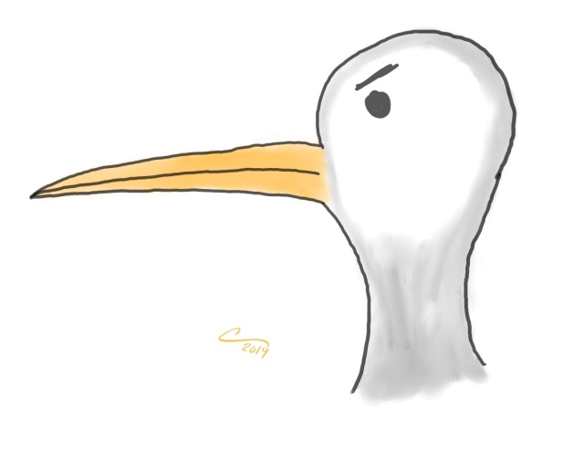 Cartoon sketch of a seagull head