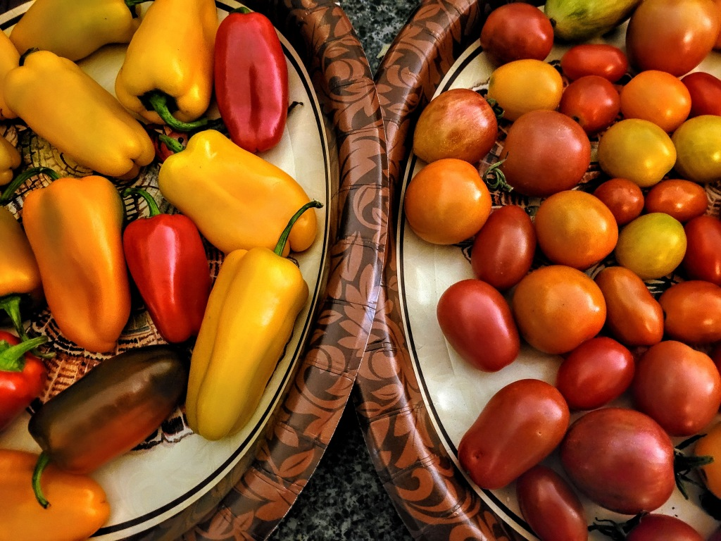 A plate of sweet peppers and a plate of multicolored cherry tomatoes